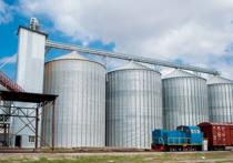 С каждым годом ухудшается качество казахстанского зерна
