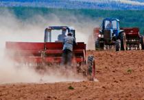 Казахстанские аграрии лишились существенной части государственной помощи