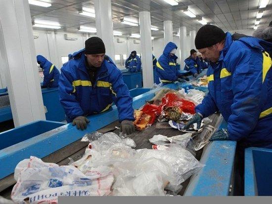 В Казахстане перерабатывается всего 2,6 процента от миллионов тонн мусора