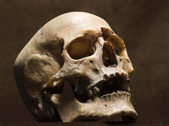 В Казахстане главарь банды убийц изготовил сувенир из черепа жертвы