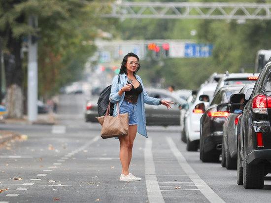 Участников дорожного движения в Казахстане разделили на две неравные категории