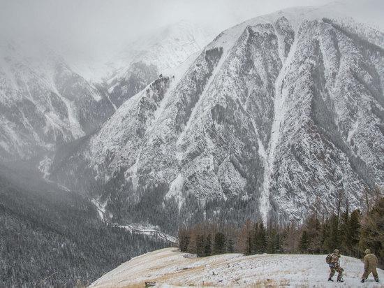 Ирбисы в Казахстане стали мифическими существами