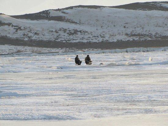 Казахстанский Алаколь прекрасен и зимой: что такое настоящий рыбный фестиваль
